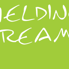 fielding-dreams-green